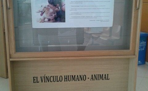 El vínculo humano-animal