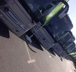 Flota d'autobusos accessibles