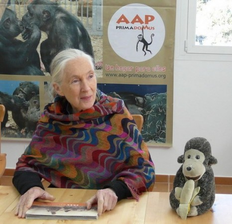 Jane Goodal,Doctora en Etología por la Universidad de Cambridge y Doctora honoris causa, en la Fundación AAP Prima Domus