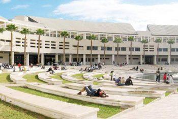 Tres nuevos grados en la Universidad de Alicante